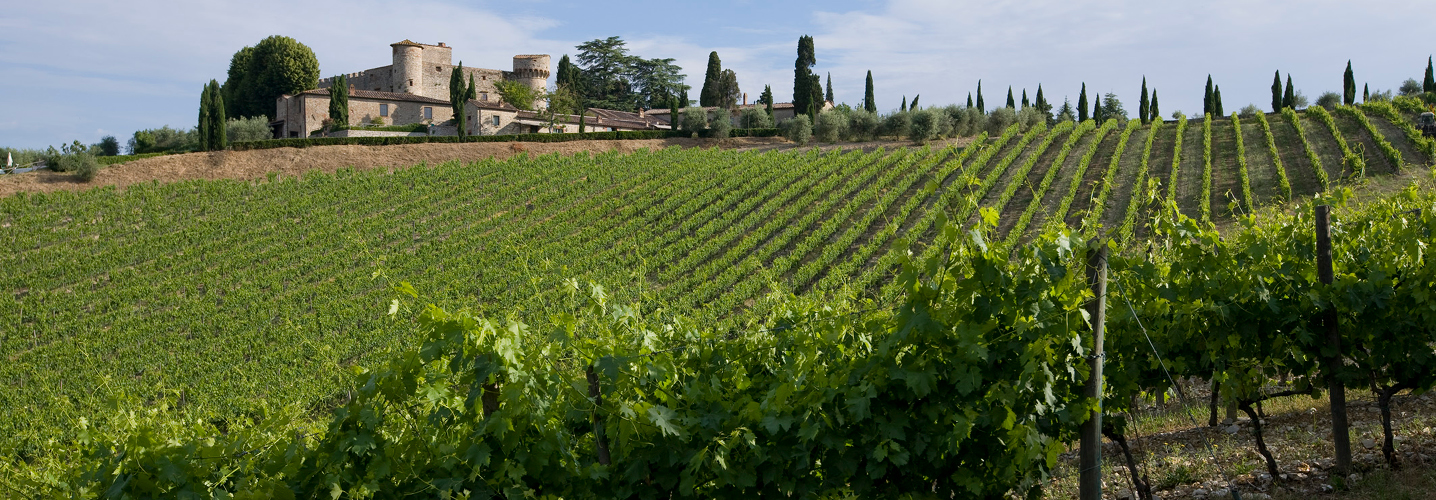 http://www.wines-of-tuscany.it/images/slide/wines-of-tuscany-07.jpg