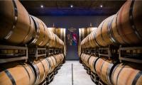The barrels of Argiano in Montalcino