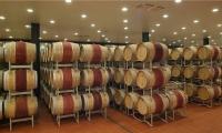 Le botti di Vino Nobile di Montepulciano di Poliziano