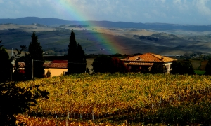 La Rasina winery in Montalcino | Marco Mantengoli, owner of La Rasina | Brunello di Montalcino vineyards in La Rasina ||