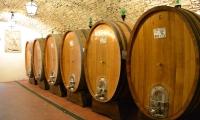 Castello di Vicchiomaggio winery